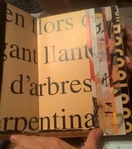 CLD2017-junio-biografia-Silberleib-libro1